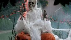 squelette accessoire déco obligatoire Halloween