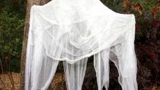 jardin fantômes tente terrifiante esprit halloween
