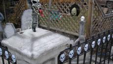 Horreur décoration crânes Halloween lugubre