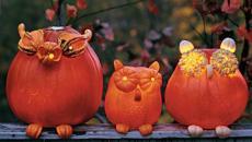 Idées de décoration Halloween