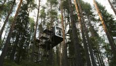 hôtel tendance suite cabane dans les arbres