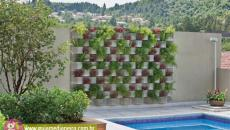 mur végétal extérieur piscine parpaings