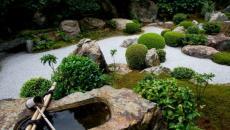 design verdure zen jardin