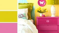 combiner couleurs palettes de couleurs nuancier
