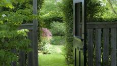 jardin verdoyant aménagé paysagiste