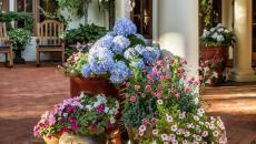 maison de campagne avec terrasse aménagée fleurs