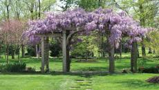 aménagement de jardin en toute beauté
