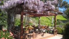 Pergola en fleurs de glycines pour aménagement jardin unique
