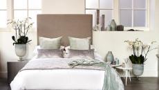 Conviviale et chaleureuse chambre principale