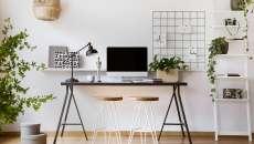 améliorer l'humeur plantes vertes au travail à la maison télétravail