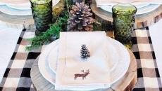 tables rustique conviviale déco pommes de pin
