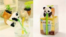 panda petit pot de fleurs