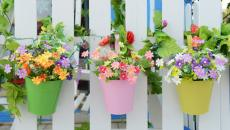 déco clôture en fleurs