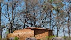 safari éléphants afrique séjour luxe