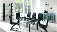chaises ameublement salle à manger