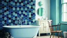 ambiance retro salle de bains baignoire ancienne d'antan