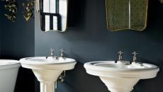 salle de bains murs foncés