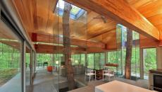 intégrer arbre dans intérieur maison