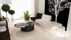 salon design en noir et blanc contemporain