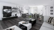 séjour moderne noir et blanc
