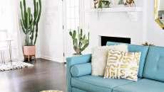 plante cactus déco séjour tendance moderne maison
