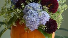 vase citrouille fleurs déco halloween
